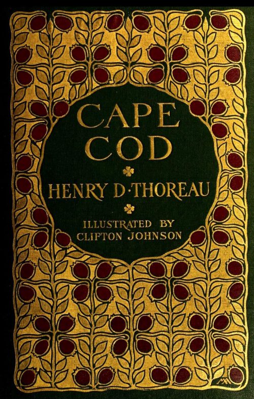 cover of Cape Cod featuring cranberry motif